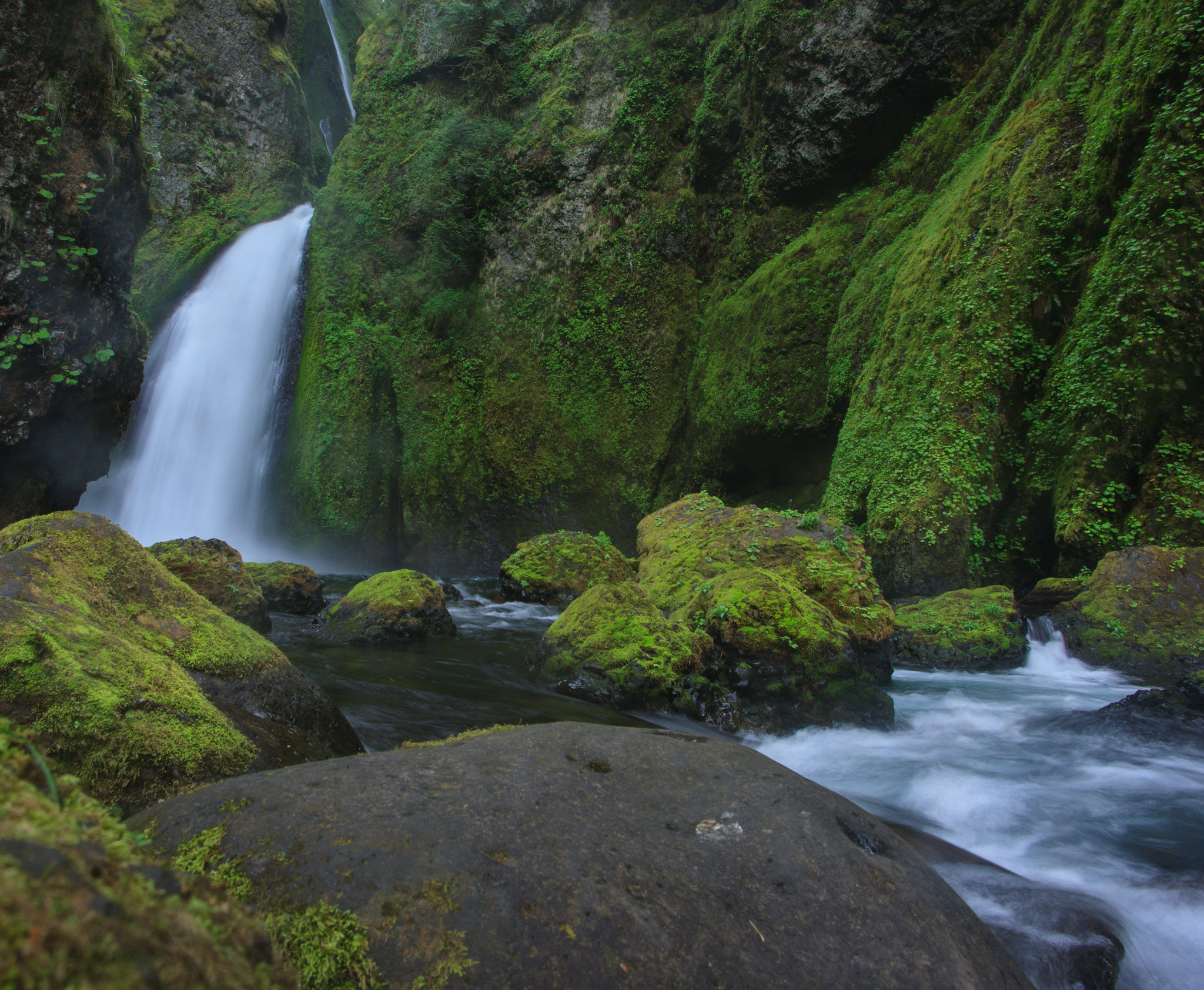oregon-waterfall-wahcella